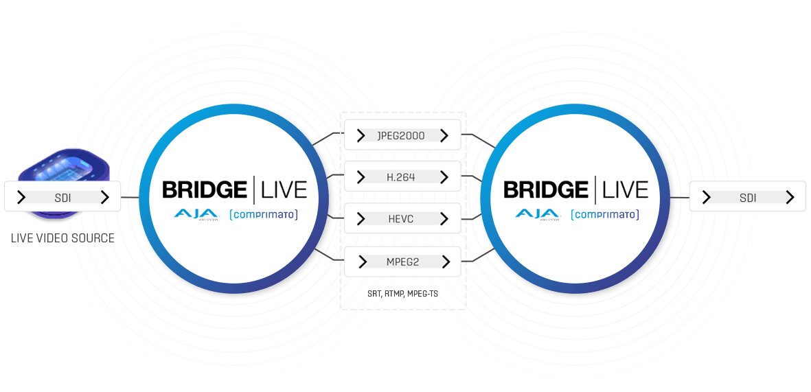 Bridge Live Contribution