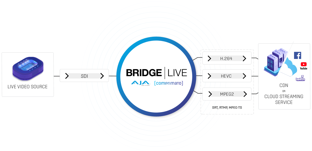 Bridge Video Streaming