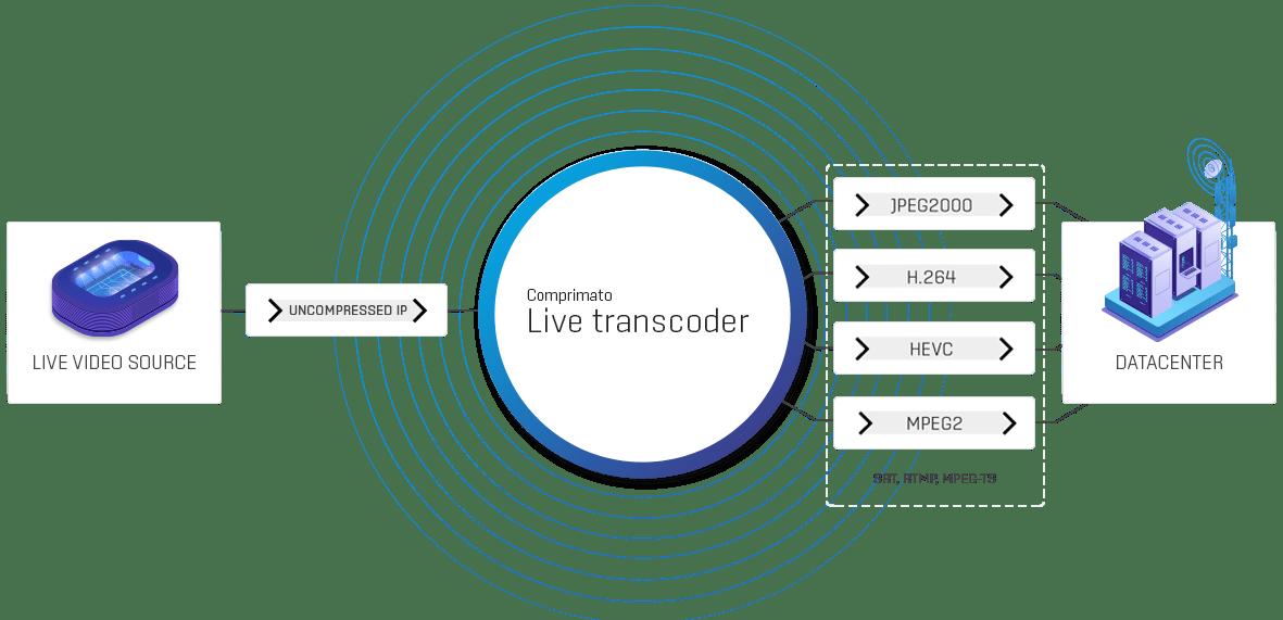 Contribution Encoding New